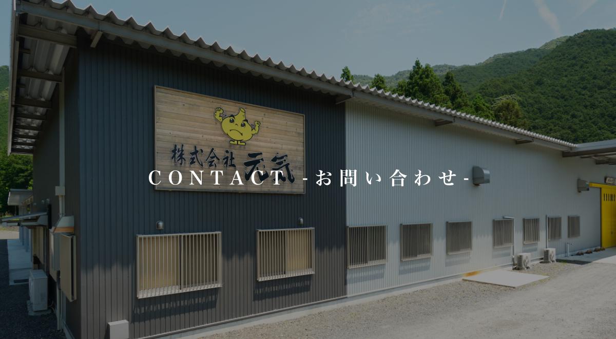 CONTACT -問い合わせ-